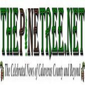 The Pine Tree TV