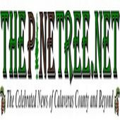 The Pine Tree TV